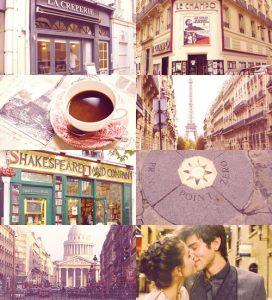 Ana i francuski poljubac - Stefani Perkins