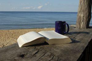 Knjiga za plažu!!!