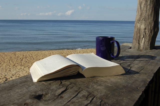 Prava knjiga za plažu!!!